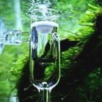 二酸化炭素(CO2)添加なしで水草を育てる方法